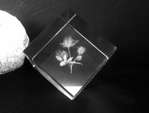 Сувенир от стъкло 10505